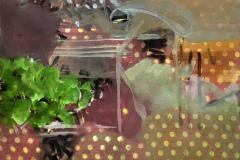 Spring-Garden-30x40-cm-2016-oil-on-printed-cloth